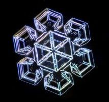 They were captured by Kenneth G. Libbrecht using a specially designed snowflake photomicroscope.