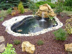 Bassin de jardin sur pinterest jardin d 39 eau mare de for Entretien jardin loiret