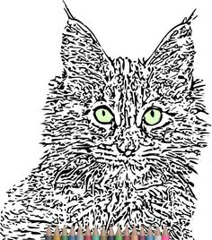 Adult Coloring Pages. Cat Coloring PagesInstant download