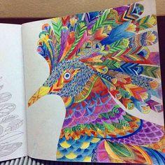 Done #tropicalwonderland #milliemarotta #colouringbook #coloring