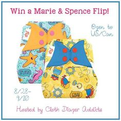 Everyone loves a cute cloth diaper. When it's a new print, it's even better. What's even better than new Flip and bumGenius Genius Series prints? The chance to WIN a new Flip cover in each print! One lucky winner will win one new Spence and one new Marie cover! Spence is a tribute diaper in …
