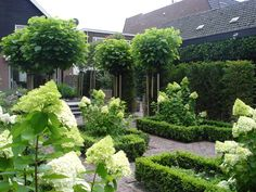 Find useful gardening tips and articles at http://www.thebloomingoasis.com  Blonk Tuinontwerp - Fotos