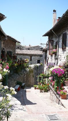 Assissi , Italy   the favorite town I visited                                                                                                                                                      More