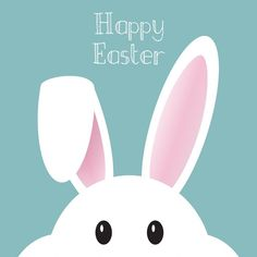 The funny humor Easter quotes. The wisdom of the Easter bunny says there is nothing better ., sayings funny The funny humor Easter quotes. The wisdom of the Easter bunny says there is nothing better . sayings bunny