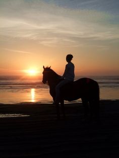 Horse back riding on the beach @ sunset. they have this at the turtle bay beach resort in hawaii! please mom say yessss