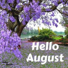 Happy New Month Quotes, New Month Wishes, Quotes About New Year, Hello August, August Month, August Zodiac Sign, Welcome August, August Images, Cover Pics For Facebook