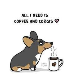 All I need is coffee and corgis