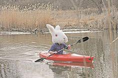 Bunny Canoe