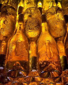Wine Maturing in the cellars at Dogobo Winery, Tokaj, Hungary by Tim Clinch