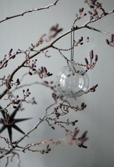 Glass baubles and br