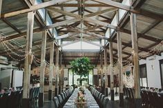 The Barn reception room with banquet tables, hanging chandelier of foliage and a dappling of fairy lights.