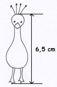 Vzorovaný páv