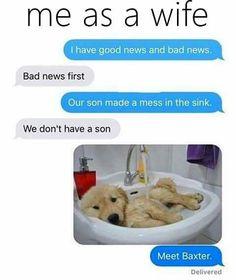 boyfriend, dog, and joke image