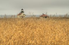 OPENING  Pt Cabrillo Lighthouse by puliarf, via Flickr