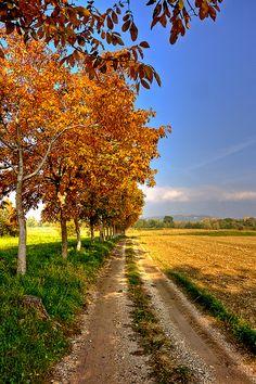 Asolo, Treviso province , Veneto region, Italy