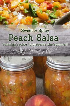 Look no further for the perfect peach salsa recipe for canning! This recipe is slightly sweet with mild to moderate heat that can be adjusted to your preference! Makes 9 pints of the best peach salsa you'll ever taste Peach Salsa Recipe For Canning, Salsa Canning Recipes, Peach Salsa Recipes, Canning Salsa, Homemade Salsa For Canning, Easy Canned Salsa Recipe, Can Peaches Recipes, Nectarine Recipes, Pressure Canning Recipes