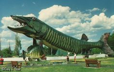 The world's largest fish, muskie, and fiberglass structure at the National Fresh Water Fishing Hall of Fame. This photo was taken by Rebecca Kerewsky.
