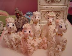 Poodle collection #kitsch