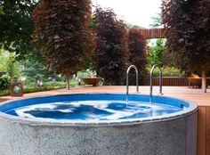 Backyard - Plunge pool