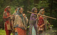 India, Narmada.  donna indigene che proteggono la foresta.