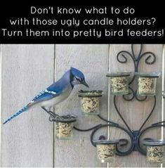 Don't know what to do with those ugly candle holders? Turn them into pretty bird feeders.