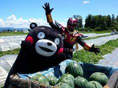 Twitter / neiger_akita: 秋田のスイカも熊本産さ負げねえぐらい美味えど。みんなして食っ ...