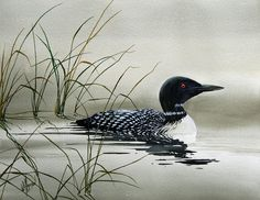 Natures Serenity Painting  - Natures Serenity Fine Art Print by James Williamson