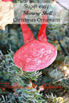 Easy Shell Christmas Ornament (15 minute craft!)