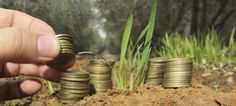 ECONOMY Pension funds go green. Social investments more lucrative investment opportunities?