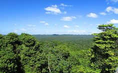 #Belize, view from Ca'ana, a beautiful view across the Maya Mountains