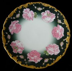 Just like mine.limoges such a beautiful pattern