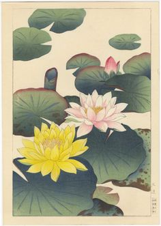 Japanese woodcut on paper by Nishimura Hodo [c. Lotus Kunst, Lotus Art, Lilies Drawing, Floral Drawing, Watercolor Projects, Watercolor Art, Japanese Woodcut, Japanese Flowers, Japanese Painting