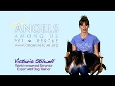 Victoria Stilwell PSA for fostering pets.