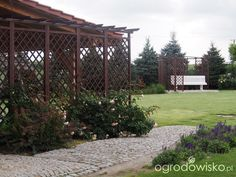 Marzenia i plany vs. rzeczywistość - strona 222 - Forum ogrodnicze - Ogrodowisko