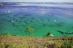 Un petit coin de paradis sauvage: La presqu'île de crozon – Come4News