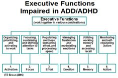 "What is the definition of Executive Functioning? ""Executive Functioning is the higher function of your brain that helps you control and regulate your behaviors and emotions."" Scientists believe tha..."