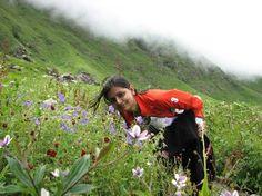 Valley of Flower Hemkund Trek >>>  #treks   #trekking   #camping  #HemkundTrek #Uttarakhand