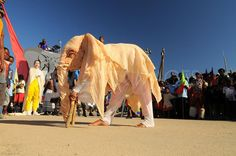 Visit the National Arts Festival in Grahamstown with my mom. This photo is by Bazil Raubach for TAB Images. National Art, Art Festival, My Mom, Camel, Africa, Community, Culture, Celebrities, Animals