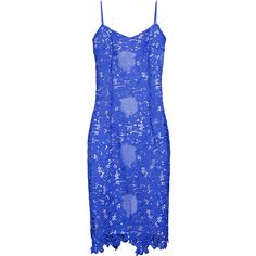 Yanina     Eyelet Lace Fitted Dress (2.835 BRL) ❤ liked on Polyvore featuring dresses, blue, eyelet lace dress, form fitting dresses, tight blue dress, fitted dresses and blue fitted dress
