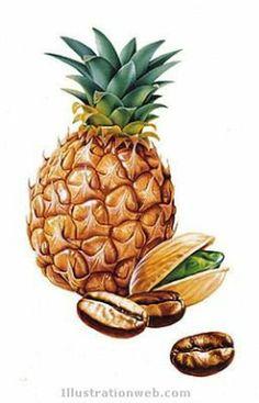 Mis Laminas para Decoupage (pág. 459)   Aprender manualidades es facilisimo.com Fruit Illustration, Food Illustrations, Painting Prints, Art Prints, Food Sketch, Kinds Of Fruits, Watercolor Fruit, Fruit Art, Fruit And Veg