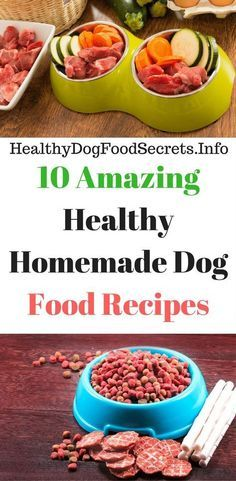 The best part about making amazing healthy homemade dog food recipes is the ability to mix and match what ingredients you have on hand. Checkout the 10 amazing healthy homemade dog food recipes l have… Dog Biscuit Recipes, Dog Treat Recipes, Dog Food Recipes, Healthy Recipes, Homemade Dog Cookies, Homemade Dog Food, Homemade Recipe, Healthy Pets, Healthy Dog Treats