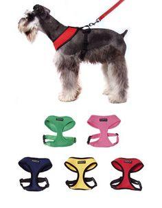 soft-harness-3.jpg 373×480 pixels