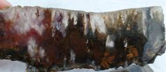 Check out this item in my Etsy shop https://www.etsy.com/listing/488881257/linda-marie-plume-agate-rough-slice