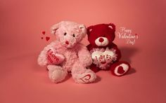 teddy bears  - 2-14-13