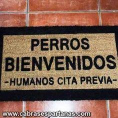 Perros bienvenidos, humanos cita previa