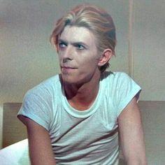 Thomas Newton (David Bowie).