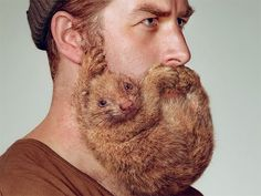 211 A Razor Brand is Trying to Dispel the 'Sexy Beard' Myth with Ads Showing Rodents Clinging to Men's Faces