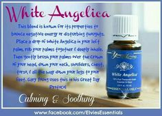 Young Living Essential Oils: White Angelica for Energy & Thoughts - Holistic Health My Essential Oils, Young Living Essential Oils, Essential Oil Blends, Yl Oils, Aromatherapy Oils, Healing Oils, White Angelica Young Living, Oils For Life, Young Living Oils