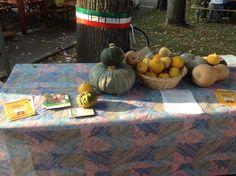 produzione locale..slow Pumpkin, Vegetables, Food, Pumpkins, Essen, Vegetable Recipes, Meals, Squash, Yemek