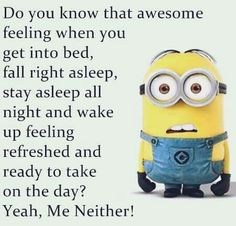 Do you know that awesome feeling when you get into bed fall right asleep st Funny Minion Memes, Minions Quotes, Funny Cartoons, Minion Humor, Funny Picture Quotes, Funny Dating Quotes, Jokes Quotes, Funny Pics, Hilarious